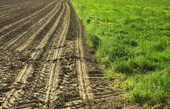 Campo coltivato. Cultivated field with traces of processing Stock Photo