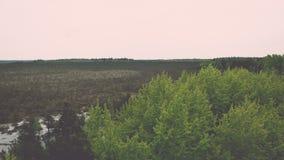 campo coltivato fresco in autunno - effetto d'annata Fotografie Stock