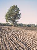 campo coltivato fresco in autunno - effetto d'annata Immagini Stock Libere da Diritti
