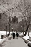 Campo común de Boston fotografía de archivo libre de regalías