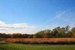 Campo com céu azul e nuvens fotografia de stock