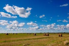 Campo com monte de feno Tempo claro com nuvens Muitos monte de feno Fotografia de Stock Royalty Free