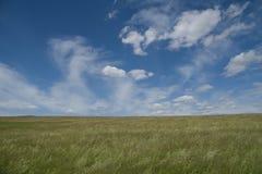 Campo com o céu azul nebuloso Fotos de Stock