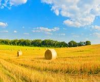 Campo con haystakcs en tiempo soleado fotografía de archivo