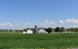 Campo con i lotti di vegetazione e granai e silos bianchi fotografia stock