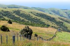 Campo con il pannello solare, Nuova Zelanda immagini stock libere da diritti