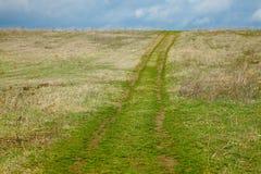 Campo con il percorso Fotografia Stock