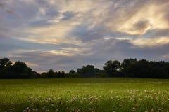 Campo con il tramonto Fotografie Stock