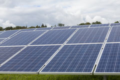 Campo con l'energia alternativa blu delle cellule solari al silicio Fotografia Stock Libera da Diritti