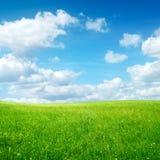 Campo con la hierba verde y el cielo azul Imagen de archivo libre de regalías
