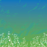 Campo con la hierba y las flores Imagen de archivo libre de regalías