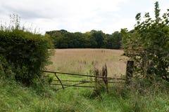 Campo con la puerta Imagen de archivo libre de regalías