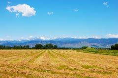 Campo con la vista de las montañas rocosas imágenes de archivo libres de regalías