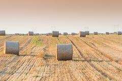 Campo con le balle della paglia Fotografie Stock