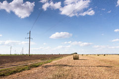 Campo con le balle di paglia Fotografia Stock Libera da Diritti