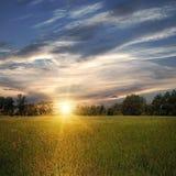 Campo con los árboles y puesta del sol Foto de archivo libre de regalías