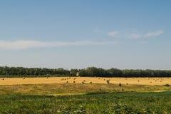 Campo con los haystacks Fotografía de archivo