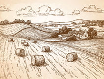 Campo con los haystacks libre illustration