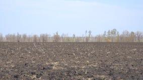 Campo con terra arata stock footage