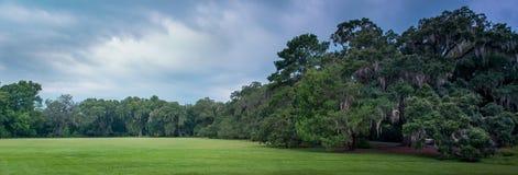 Campo confinado por un bosque Fotos de archivo