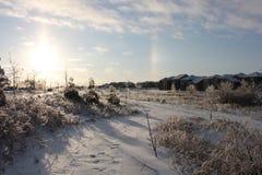 Campo congelado Fotografía de archivo