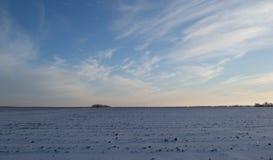 Campo congelado del invierno Fotografía de archivo libre de regalías