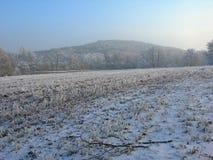 Campo congelato Fotografia Stock