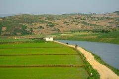 Campo, Coreia do Norte Imagens de Stock