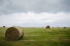 Campo cosechado con las balas de la paja en invierno Imagen de archivo