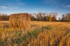 Campo cosechado con las balas de la paja en otoño Fotografía de archivo libre de regalías
