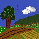 Campo crescido na mola pixelated foto de stock