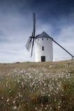 campo criptana de windmill Στοκ Φωτογραφία