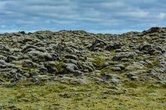 Campo cubierto de musgo de la piedra de la lava en Islandia en un día de verano foto de archivo