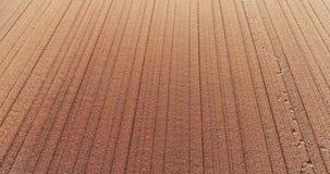 Campo cultivado fresco da vista aérea vídeos de arquivo
