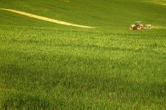 Campo cultivado no ` Orcia de Val d, Toscânia, com um trator que trabalha a terra 03/25/2016 Foto de Stock Royalty Free