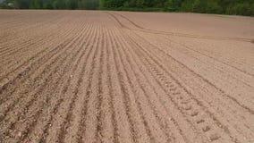 Campo cultivado recentemente semeado da agricultura da mola, aéreo video estoque