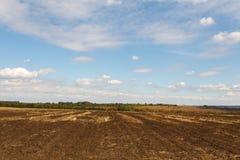 Campo cultivado sob o céu azul foto de stock