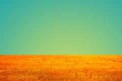 Campo d'annata e fondo del cielo Fotografia Stock