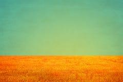 Campo d'annata e fondo del cielo, fondo d'annata Grungy Fotografie Stock Libere da Diritti