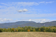 Campo d'autunno Fotografia Stock