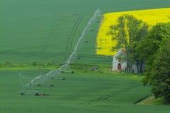 Campo d'innaffiatura agricolo dell'impianto di irrigazione Fotografia Stock