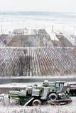 Campo da agricultura Foto de Stock