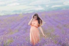 Campo da alfazema e uma mulher gravida feliz Fotos de Stock
