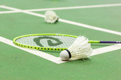 Campo da badminton Immagini Stock Libere da Diritti