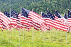 Campo da bandeira Foto de Stock