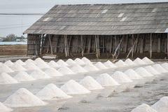 Campo da bandeja de sal Fotografia de Stock