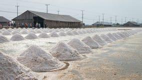 Campo da bandeja de sal Fotos de Stock