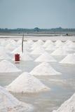 Campo da bandeja de sal Foto de Stock