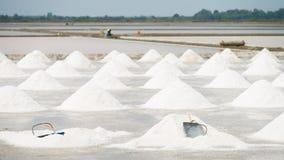 Campo da bandeja de sal Imagem de Stock