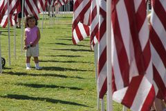 Campo da cura em 09-11-2010 Fotografia de Stock Royalty Free
